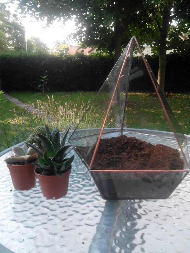 faire un terrarium