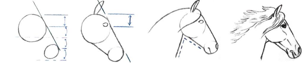 dessiner une tete de cheval