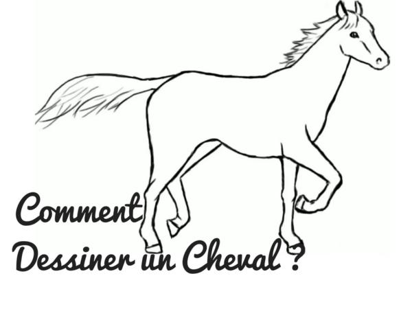 Comment dessiner conseils pratiques simples crayons et pinceaux - Apprendre a dessiner des chevaux ...